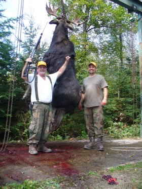 moose 2011